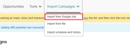 Import campaign from Google option