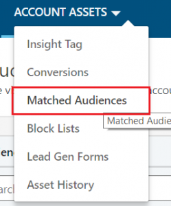 Matched Audience under Account access