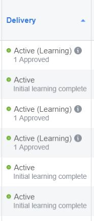 Facebook delivery initial learning complete